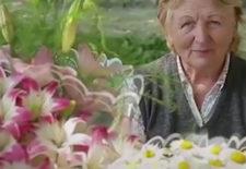 Цветы в помощь